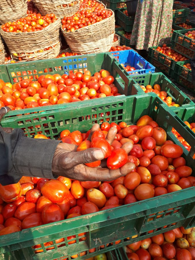 171201 Nigerian tomatoes delivered