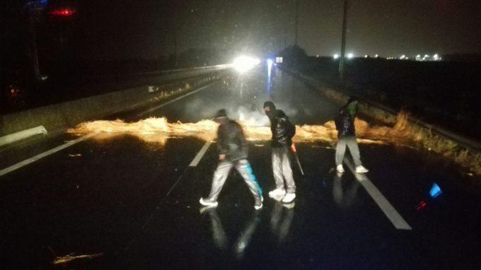 Calais chansaw