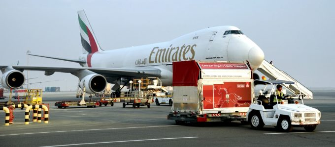 Emirates-SkyCargo-brings-champion-racehorses-to-Dubai