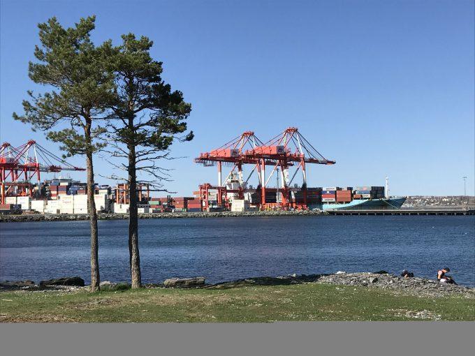 Maersk CAE at Halterm May18