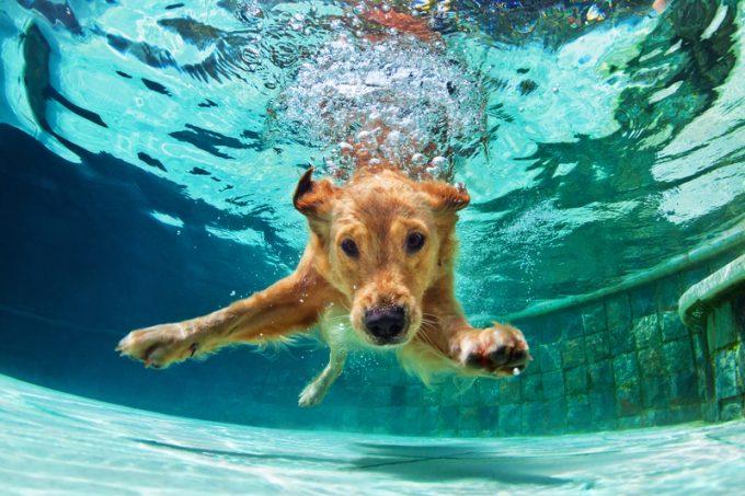 JD Logistics shares… underwater