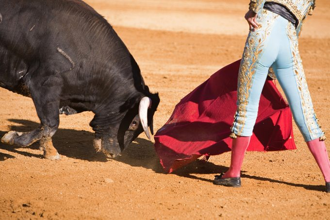 Bullfighter with the Cape in the Bullfight, Spain