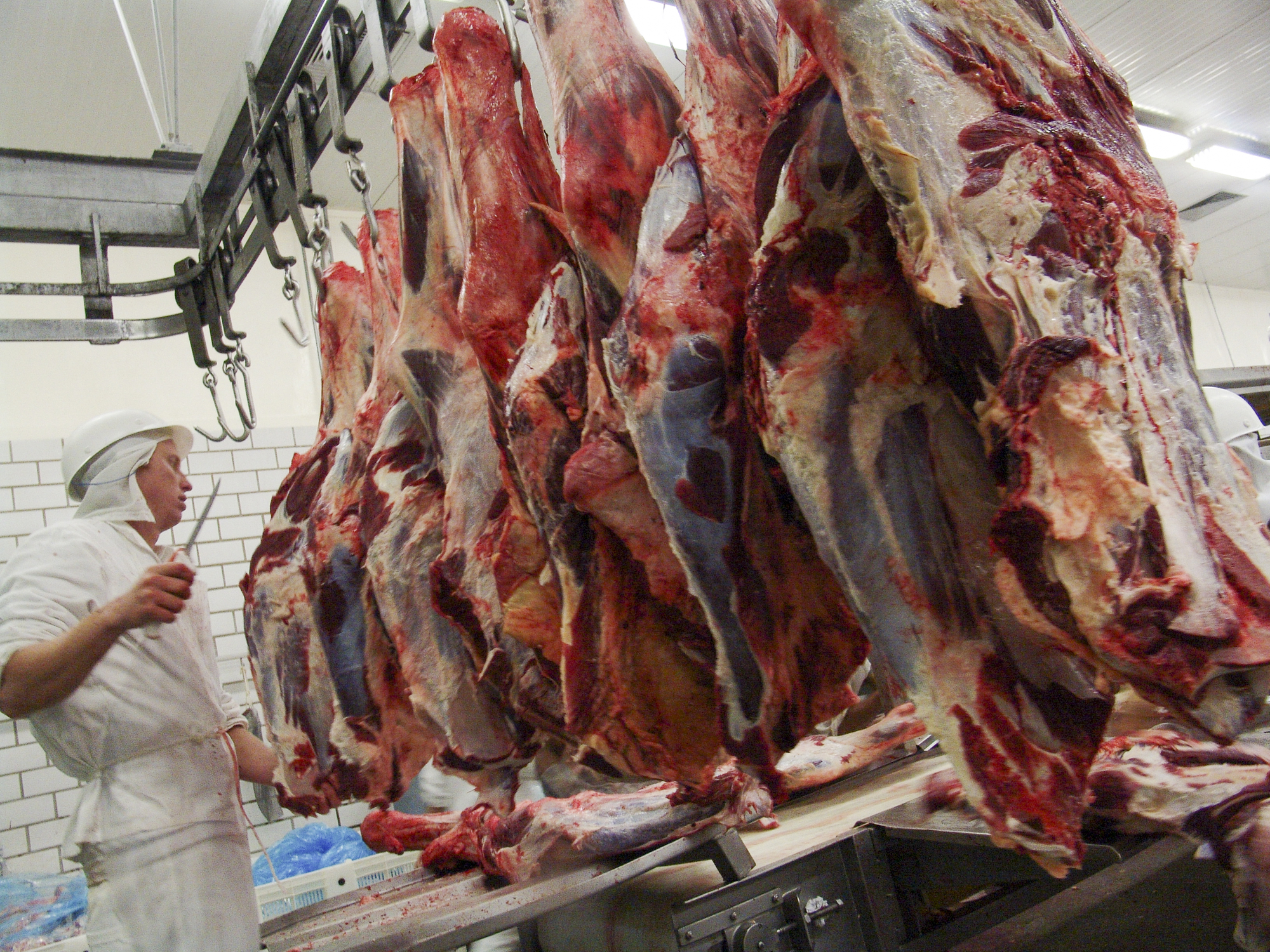 meat scandal Dead meat a meat scandal in brazil damages two of its biggest firms chile, china and the eu have banned some or all of the country's meat.