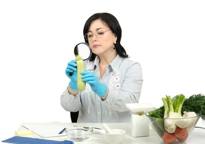 Phytosanitary technician carefully inspecting at a zucchini