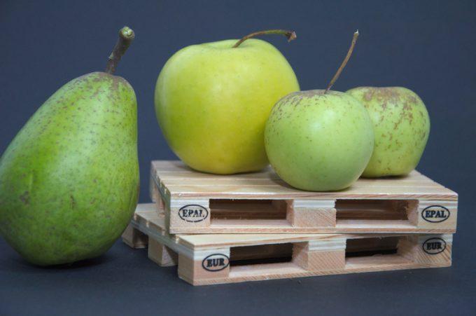fruit shipment