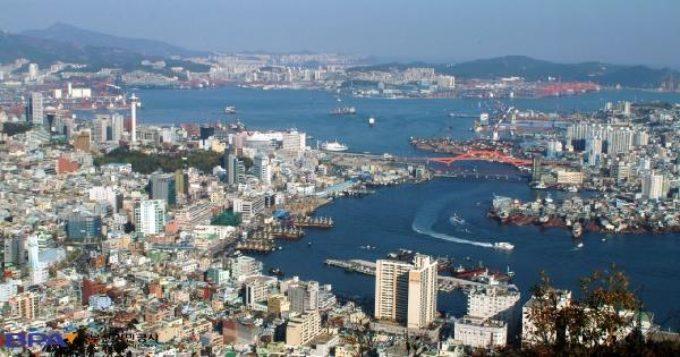 Port of Busan Panorama
